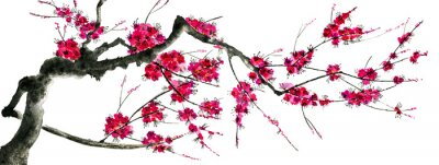 Nálepka A branch of a blossoming sakura. Pink and red stylized flowers of plum mei and  wild cherry . Watercolor and ink illustration of tree in style sumi-e, go-hua,  u-sin. Oriental traditional painting. .