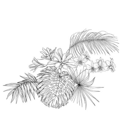 Nálepka A composition of tropical plants, palm leaves