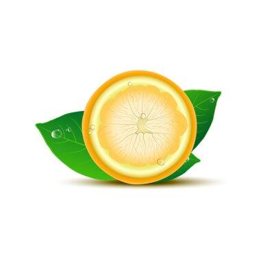 Nálepka Abstrakt citron s listy a kapky na bílém pozadí