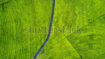 Nálepka Aerial view of empty highway on the tea plantation. Shot at Subang highlands, Indonesia