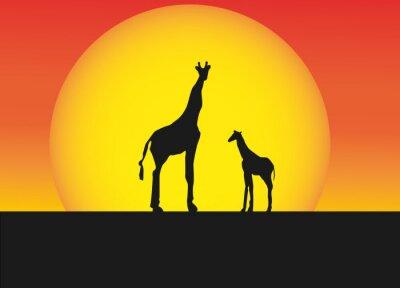 Nálepka Afrických žiraf v silueta krajiny