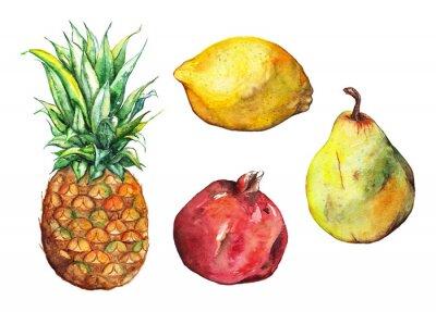 Nálepka Akvarel ananas granátové jablko citrón hruška ovoce set izolované