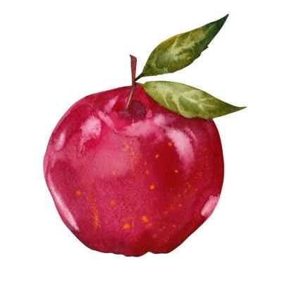 Nálepka akvarel červené jablko