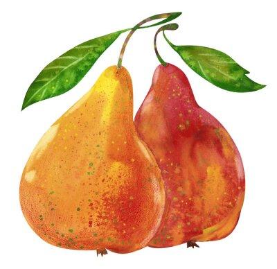 Nálepka Akvarel chutné hrušky ručně kreslenými ilustrace