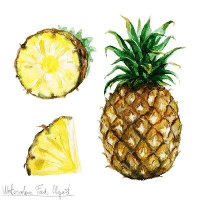 Nálepka Akvarel Food Clipart - ananas