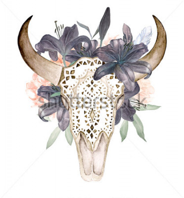 Nálepka Akvarel izolované býčí hlava s květinami a peří na bílém pozadí. Boho styl. Okrasná lebka na černém pozadí pro balení, tapety, triky, textil, plakáty, karty, tisky
