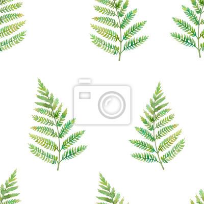Akvarel kapradina list bezešvé vzor. Ručně malované zeleň textury design. Závod siluetu na bílém pozadí