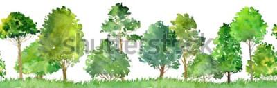 Nálepka akvarel krajina s listnatými stromy, borovice, keře a trávy, bezešvé pattern, abstraktní pozadí přírody, lesní hranice, ručně tažené ilustrace