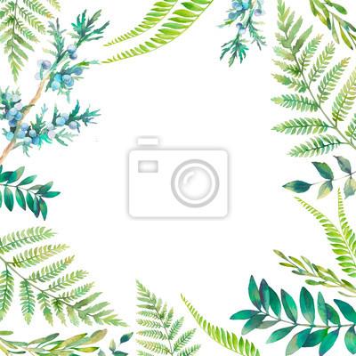 Akvarel květinové rám. Ruční provedení tažené jarní rostliny karta: botanické prvky na bílém pozadí. Větve, kapradiny, plody a listy na hranicích