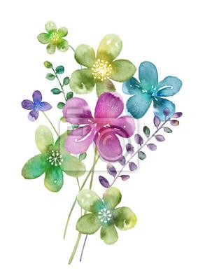 Akvarel Kvetiny Nastavit Rucne Kreslene Kvetinove Prvky Izolovanych
