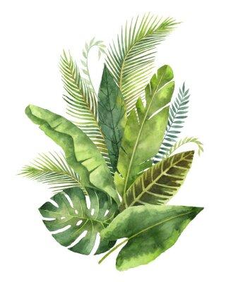 Nálepka Akvarel kytice tropických listů a větví izolovaných na bílém pozadí.