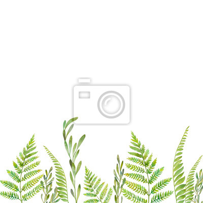 Akvarel lesní rostliny rám. Ručně malované zeleň hranice na bílém pozadí. Květinový vzor silueta karta