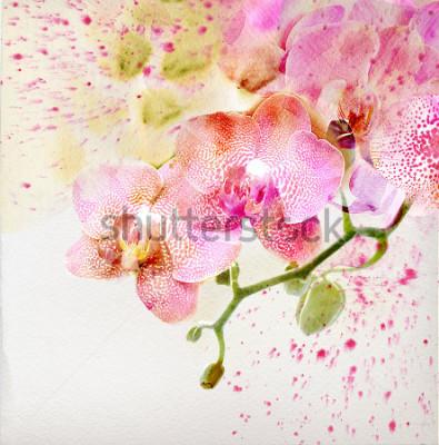 Nálepka Akvarel malba, květinové pozadí