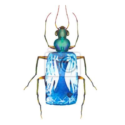 Akvarel motýl s diamantem. Ručně malovaná šperky zvíře izolováno na bílém pozadí. Módní tištěné