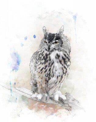 Nálepka Akvarel Obrázek Owl