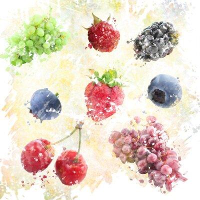 Nálepka Akvarel Plody pozadí