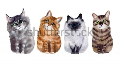 Nálepka Akvarel roztomilé vtipné kočky na bílém pozadí
