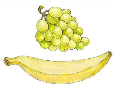 Nálepka Akvarel sady ovoce: hrozny a banán