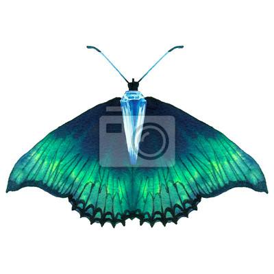 Akvarel zelená motýl s diamantem. Ručně malovaná šperky zvíře izolováno na bílém pozadí. Módní tištěné