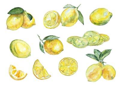 Nálepka Akvarelu. Vintage set citronů.