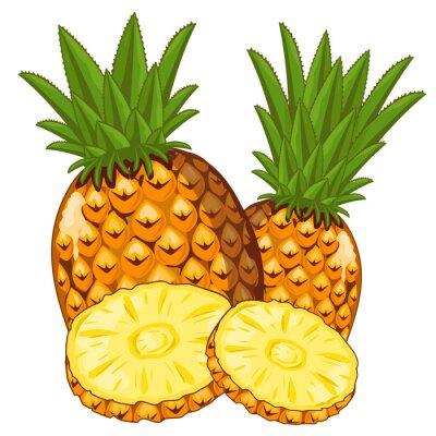 Nálepka Ananas izolovaných na bílém pozadí.