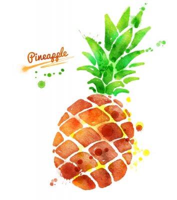 Nálepka Ananas s barvou postříkání.