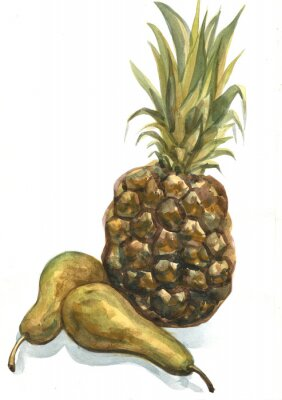 Nálepka Ananasu a hrušky na bílém pozadí. akvarelu