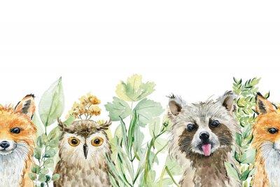 Nálepka Animals watercolor illustration