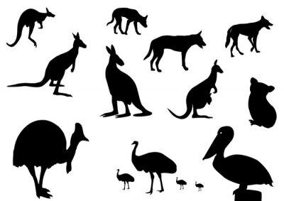 Nálepka Australský zvířat silueta