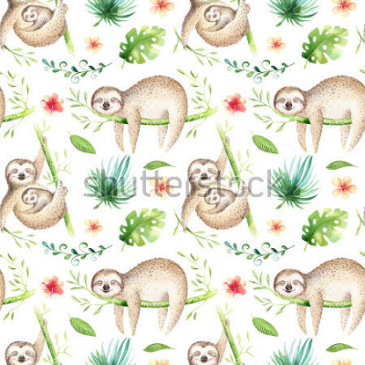 Nálepka Baby animals sloth nursery isolated seamless pattern. Watercolor boho tropical drawing, child tropical drawing cute palm tree leaves, tropic green texture,exotic flower. Aloha backgraund