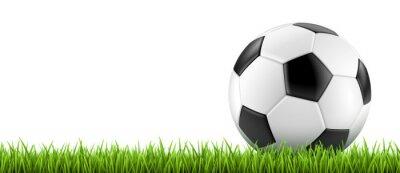 Nálepka Ballon de fotbal vectoriel 2