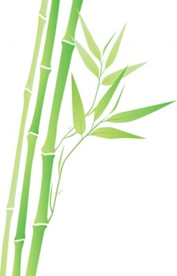 Nálepka Bambus