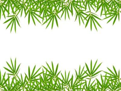 Nálepka bambusové listy izolovaných na bílém pozadí