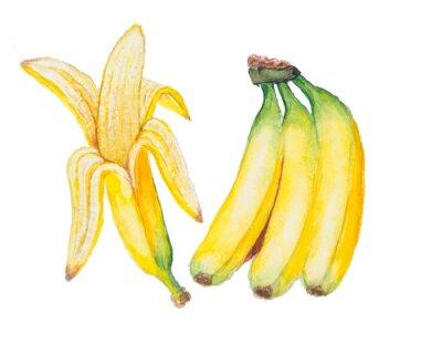 Nálepka Banana akvarel na bílém pozadí