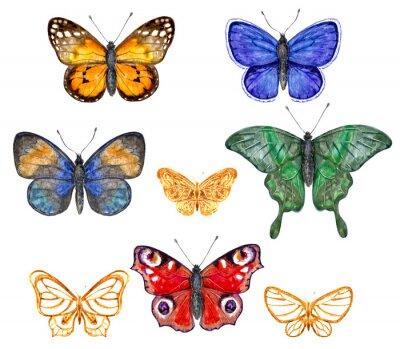Nálepka Barevné motýli set