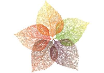 Nálepka barevné podzimní listí, vektor