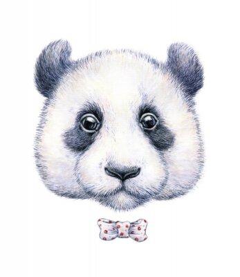 Nálepka Barva vody kresba panda na bílém pozadí