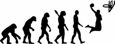 Nálepka Basketbal Evolution
