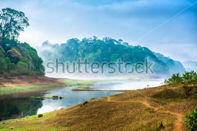 Nálepka beautiful landscape with wild forest and river with fog in India. Periyar National Park, Kerala, India