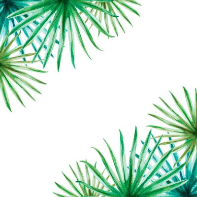 Nálepka Beautiful tropical leaves frame. Palm. Watercolor painting. Exotic plant. Natural print. Sketch drawing. Botanical composition. Greeting card. Painted background. Hand drawn illustration.