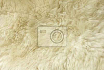 Bílá chlupatý přírodní ovčí kožešinové textury pro pozadí