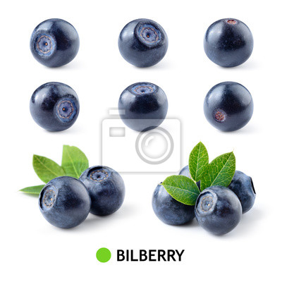 Nálepka Bilberry. Bilberries isolated. Bilberry on white. Bilberries with leaves. Blueberry.