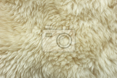 Bílé chlupaté přírodní ovčí kožešinové textury na pozadí