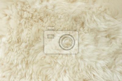 Bílé chlupaté přírodní ovčí kožešiny textury na pozadí