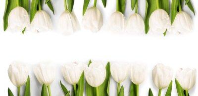 Nálepka Bílé tulipány se stínem