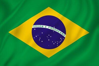 Nálepka Brazílie flag