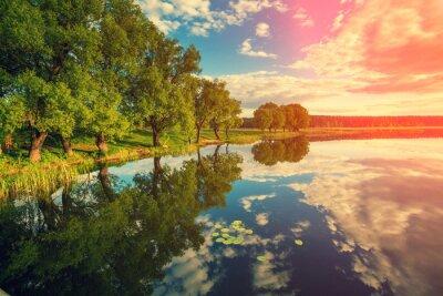Nálepka Břeh řeky se stromy při západu slunce