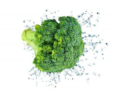 Nálepka brokolice stříkající izolované