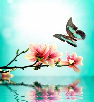 Nálepka Butterfly a květina magnólie
