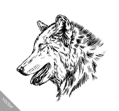 Nálepka černá a bílá Engrave izolované vlk